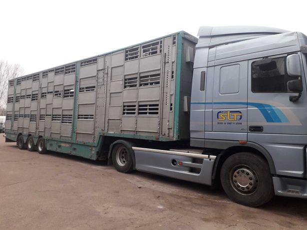 Продам скотовоз PEZZAIOLI SBA-32U