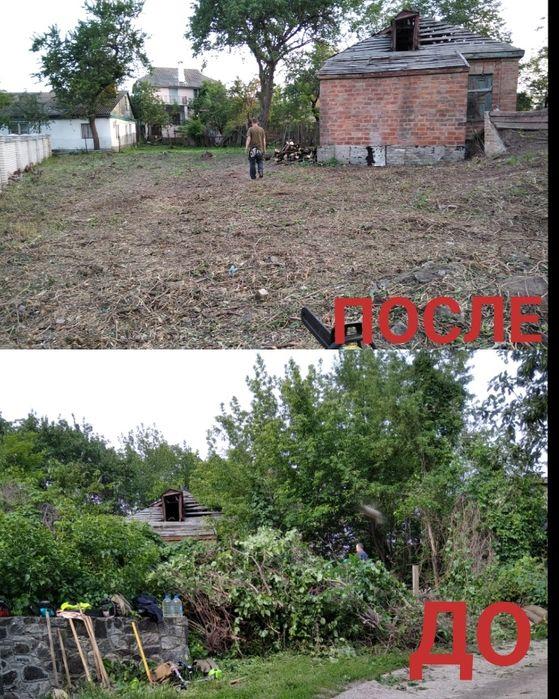 Уборка территории от зарослей. Расчистка территории. Спил деревьев. Черкассы - изображение 1