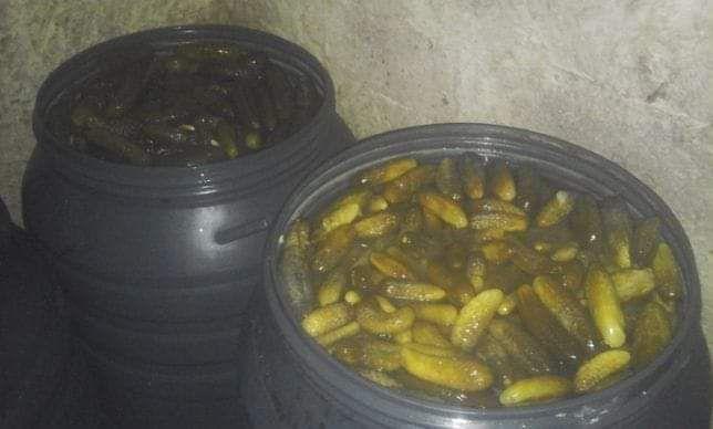 Продам квашений огірок Большая Побойная - изображение 1