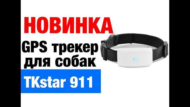 Водостійкий GPS трекер TKSTAR TK911 GPS трекер для собак, котов tk 911