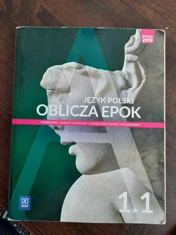 Język polski podręcznik dla klas 1. Zakres podstawowy i rozszerzony