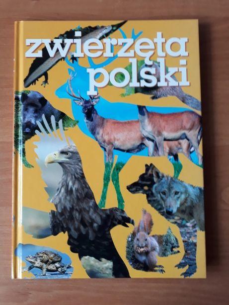 Zwierzęta Polski. EGMONT