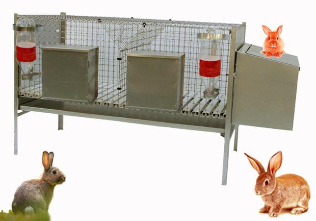 Jaula - Criação de coelhos com duas divisórias + 1 NINHO