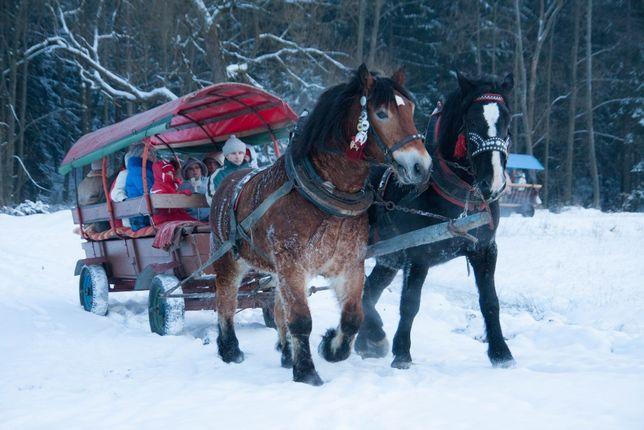 Kuligi, przejażdżki konne po malowniczej Soli Kiczorze