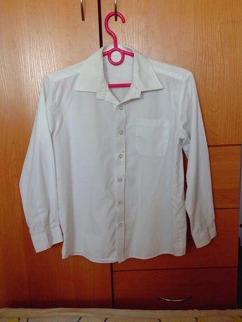 Школьная рубашка PETITO 9-10 лет (140 см)