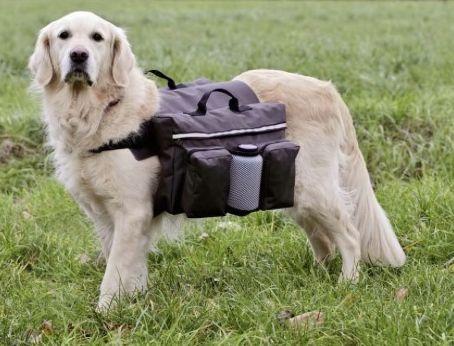 Mochila de treino para cães L