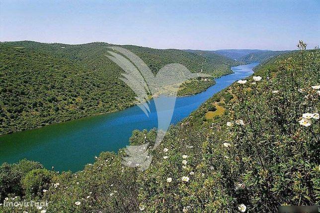Terreno 10 hect no Parque Natural do Tejo