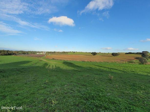 Terreno em Estremoz, com 48000 m2