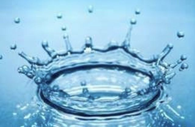 Woda RO DI filtr odwroconej osmozy krewetki paletki morskie