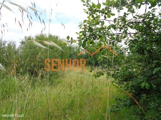 Terreno para construção em Ermesinde