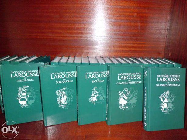 Enciclopédia Dicionário Temático Larousse - 28 livros