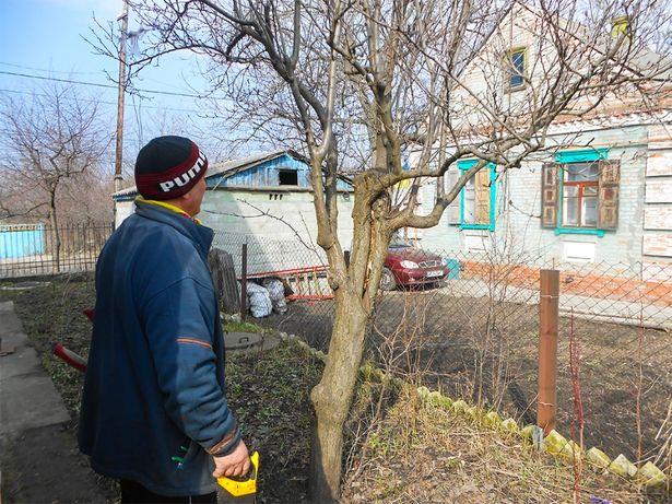ОБРЕЗКА садовых деревьев, САДОВНИК Обрезка сада, уход за садом