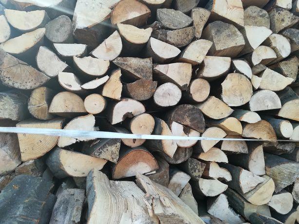 Drewno opałowe i kominkowe oraz trociny, trocina