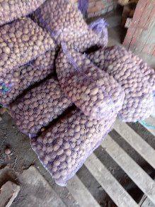 продам мелко- посадочный картофель