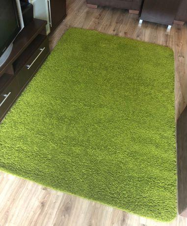 Zielony dywan!!!