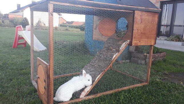 Klatka dla królika z wybiegiem