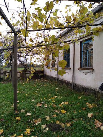 Прадаиотса дом савсеми удопствами коростенски раион село каленски.