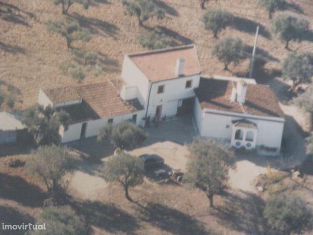 Monte Alentejano 2 casas no Redondo