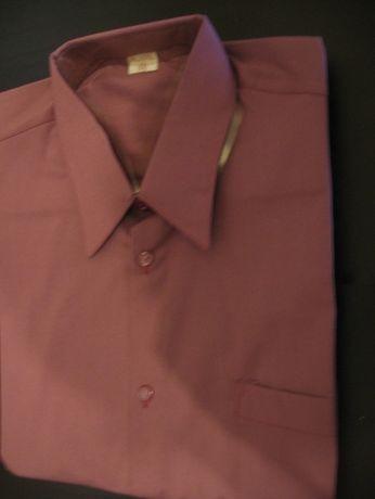 koszula męska bawełna krótki rękaw
