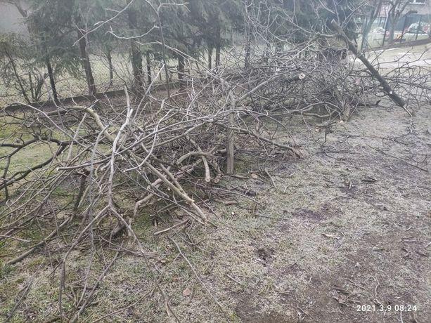 Drewno do pocięcia na opał