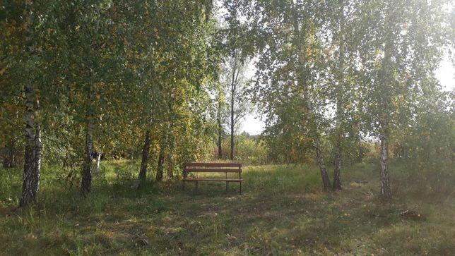 Киевская область , Иванковский район,село Страхолесье. ул. Набережная