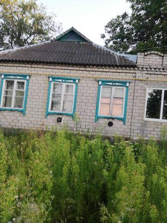 Продам дом в Бородаевке