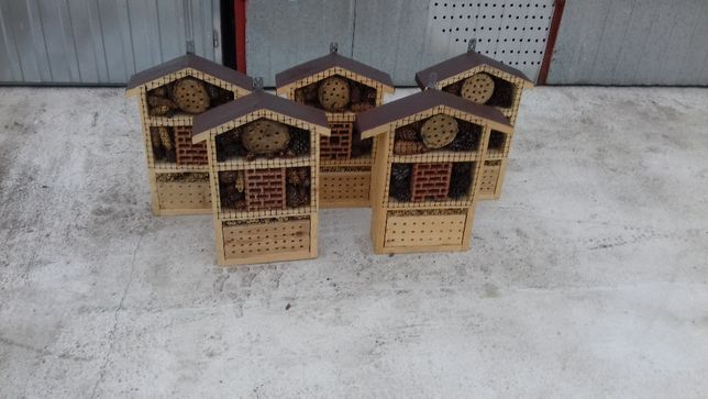 Domek dla zapylaczy, pszczoła murarka, ekohotel