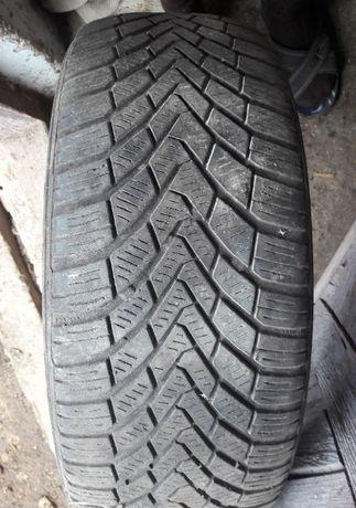 Шини зимові (резина) Continental TS 850 205/55 R16 91T M+S