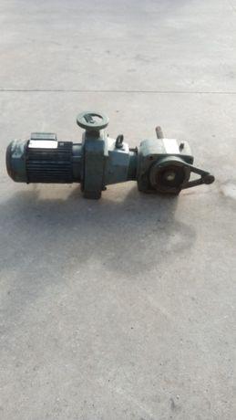 Motor Trifásico com Rotor