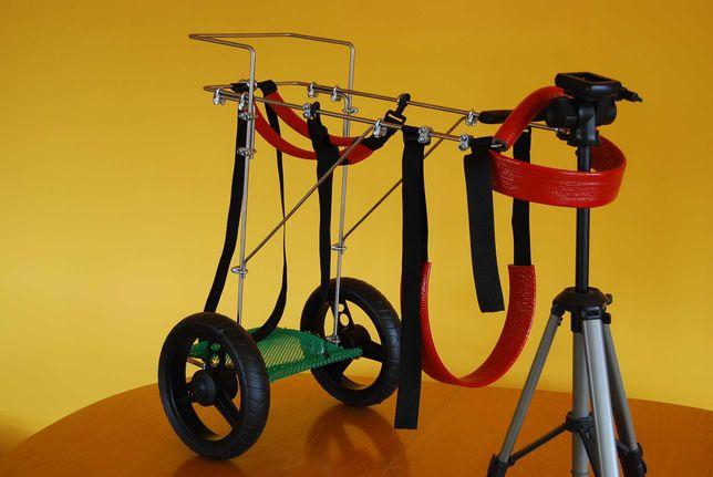 Wózek inwalidzki dla dużego psa, wilczur