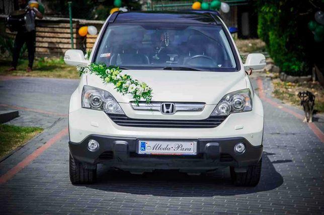 Honda Cr-V Executive. Biała perła