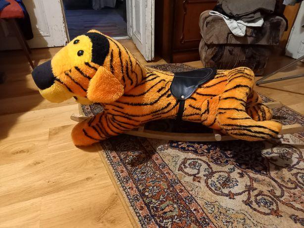 Tygrys bujany na biegunach