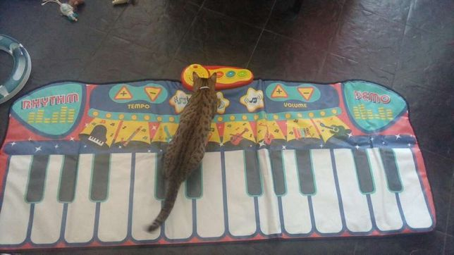 Piano gigante infantil