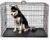 Аренда-Оренда клеток для собак и кошек-все размеры.
