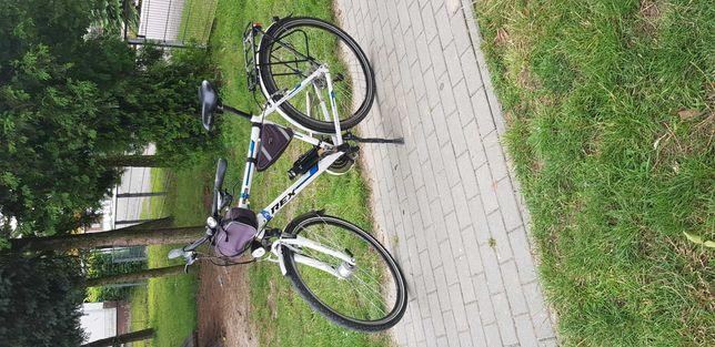 Rower męski  REX