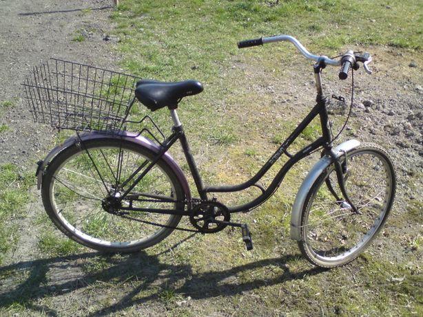 Rower Rabeneick Holly Day-zamiana