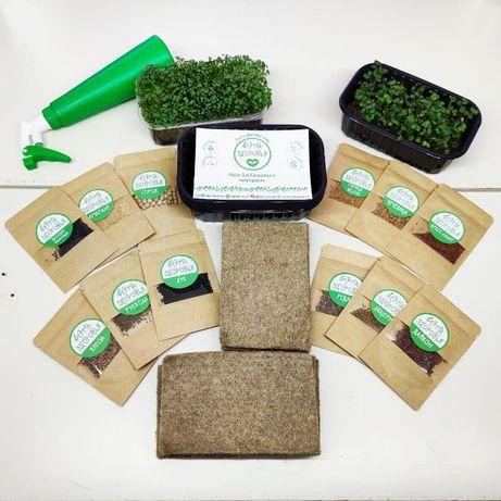 Микрозелень дома, наборы для выращивания микрогрина, microgreen