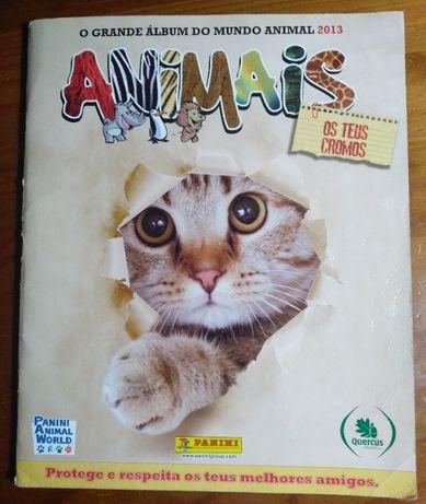 Coleção dos animais 2013