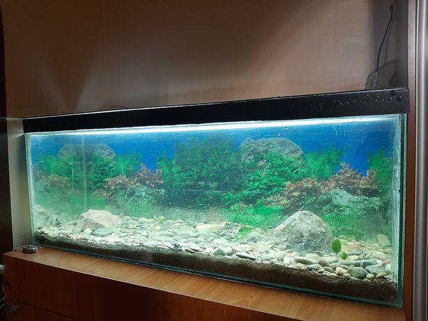Продам аквариумы в Краснодоне