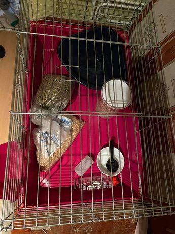 klatka dla królika /swinki+ wyposażenie