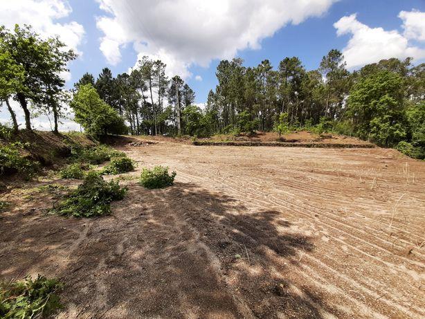 Terreno 6.000m2 para construção de moradia em Fafe (OPORTUNIDADE)