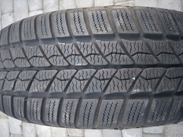 Barum, Semperir 195,175/65 r15