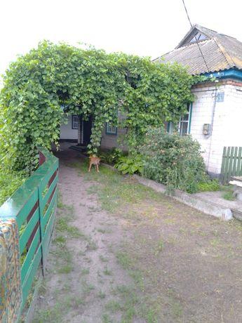 Продам дом в с. Песчаное