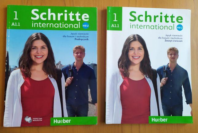 Schritte 1 A1/1 podręcznik