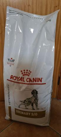 Saca de Ração Royal Canin e Caixa de OMNICONDRO 20