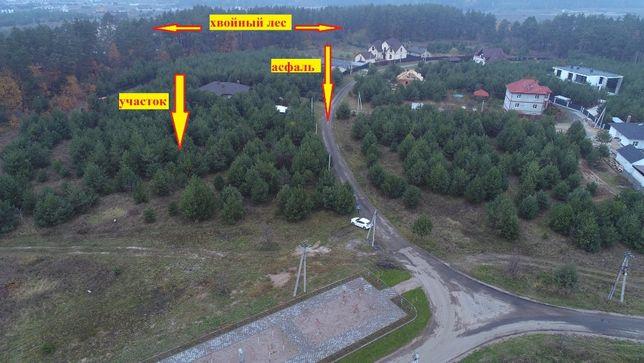 Бобрица продам участок 25 соток в окружении соснового леса