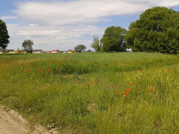 земельна ділянка під будівництво с.Біла Криниця