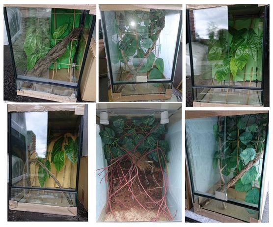 Gekony orzęsione, terraria