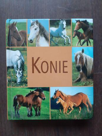 Książka Konie - poradnik