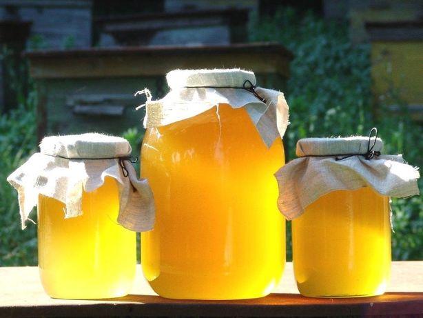 Мёд с подсолнуха